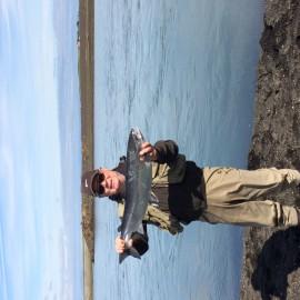 Strong runs are now of big salmon into East Holsa – The Lover Ranga Area.